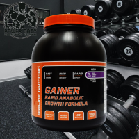 МАССнабор RAPID ANABOLIC GAINER...